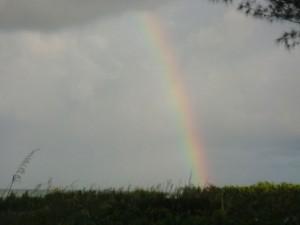 Debbie Sent A Rainbow This Morning